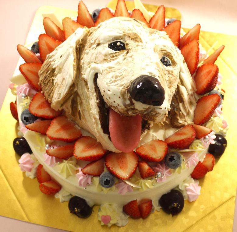 立体3dケーキ オーダーケーキ専門店ケーキ工房モダンタイムス